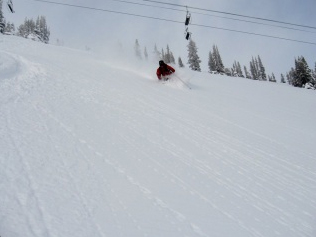 http://www.doglotion.com/wp-content/uploads/sites/default/files/horsesnow.jpg