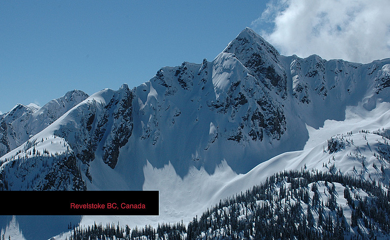http://www.doglotion.com/wp-content/uploads/sites/default/files/revivenue.jpg