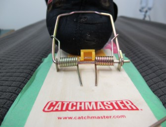 Backcountry Gear Hack: Doglofit Ratical® (High) Tech Binding