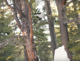 Watch: Tanner Hall's 'In The Meantime'