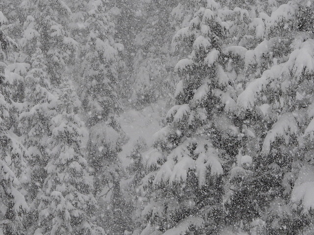 Squamish Got Puked On – Winter is Here (with Video)