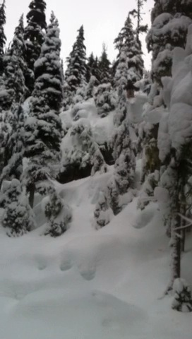 From a new season to a knew year whistler blackcomb is bringing the pow!