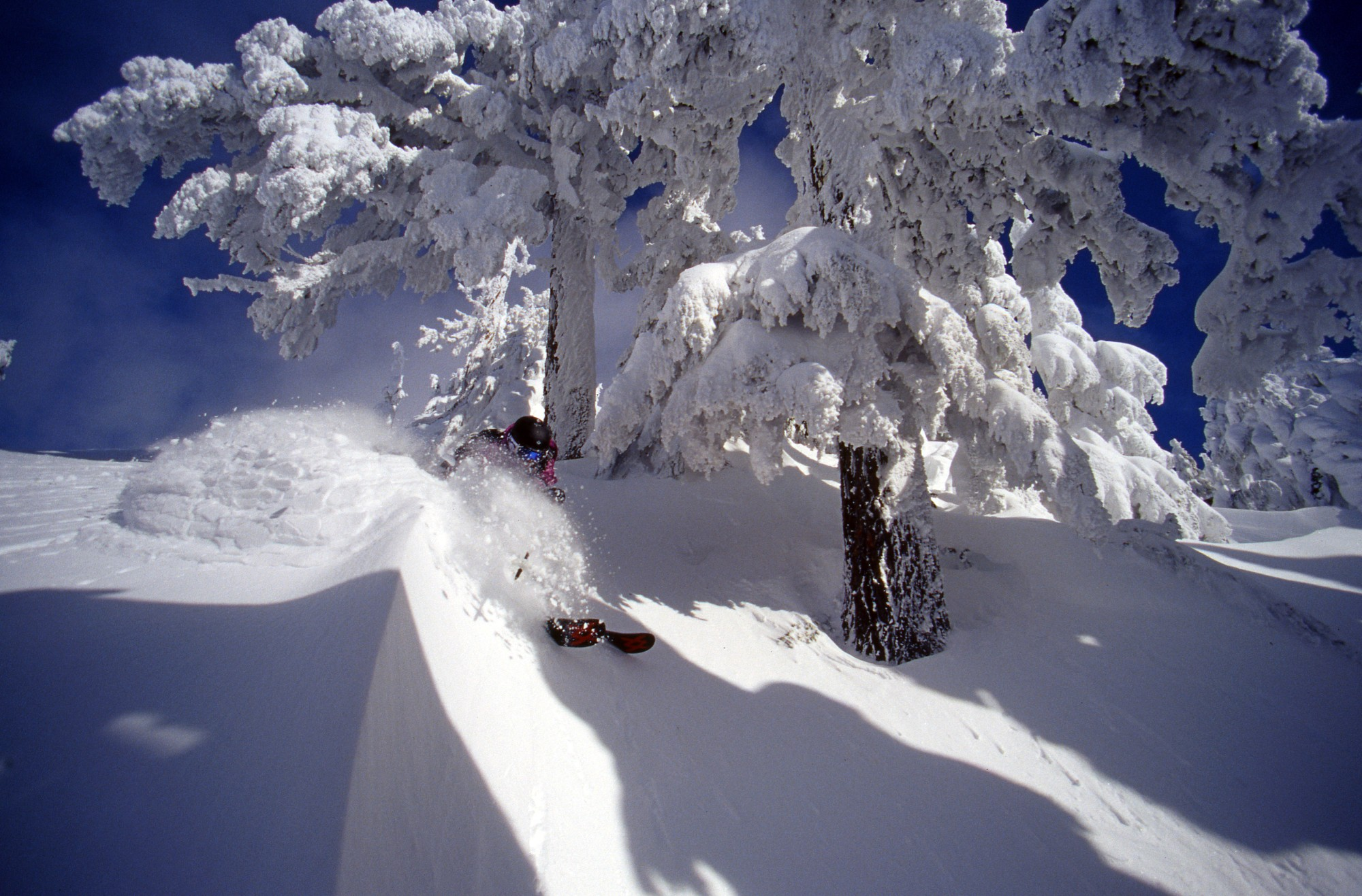 Big-Ass Trees and Pow – Mt Cain Photo Essay